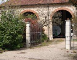 ortoteca produce verdura frutta biologica brendola Vicenza